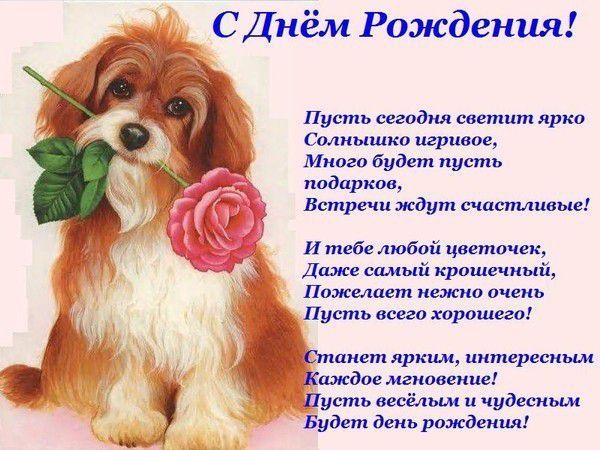 Поздравляю с днем рождения подруга стихи красивые прикольные